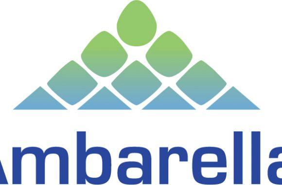 Company Profile: Ambarella